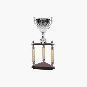 Copa Clásica 4145